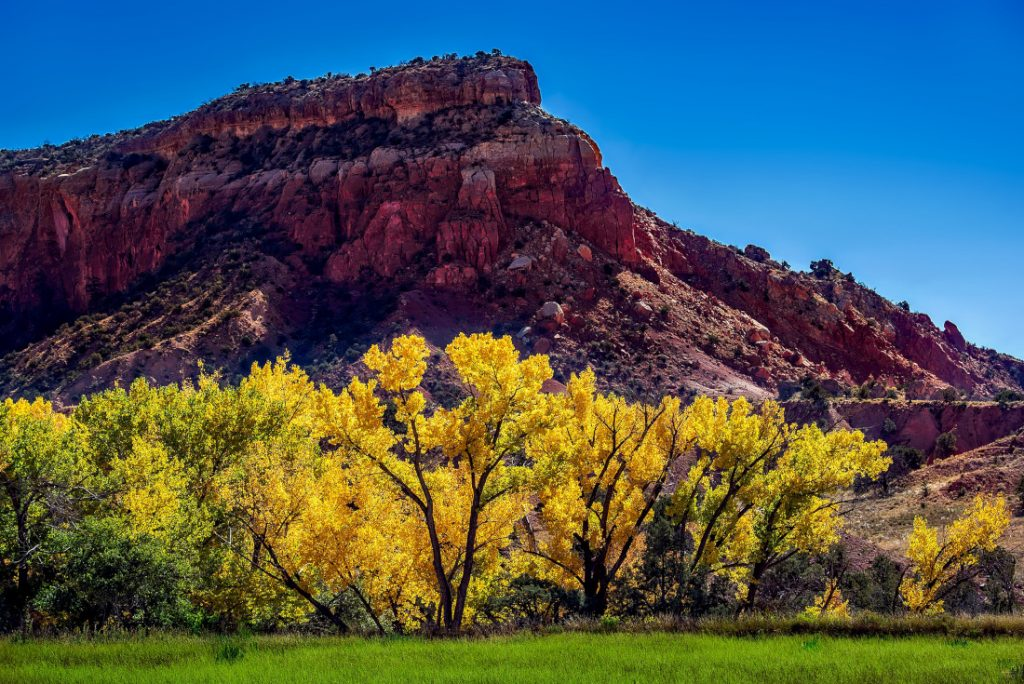New Mexico Mobile Home Living